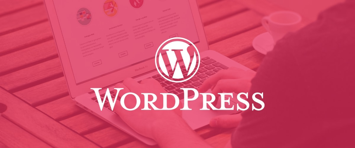 Do Web Developers use WordPress