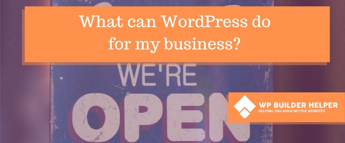 what can wordpress do for my business