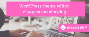 WordPress theme editor not showing changes