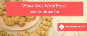 what does wordpress use cookies for